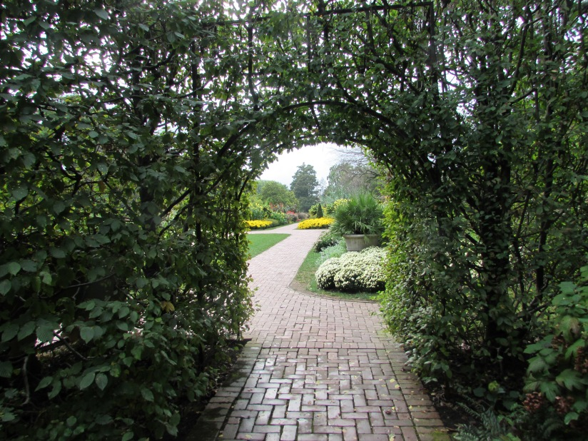 An archway of Trees Longwood Gardens Kennett Square Pennsylvania