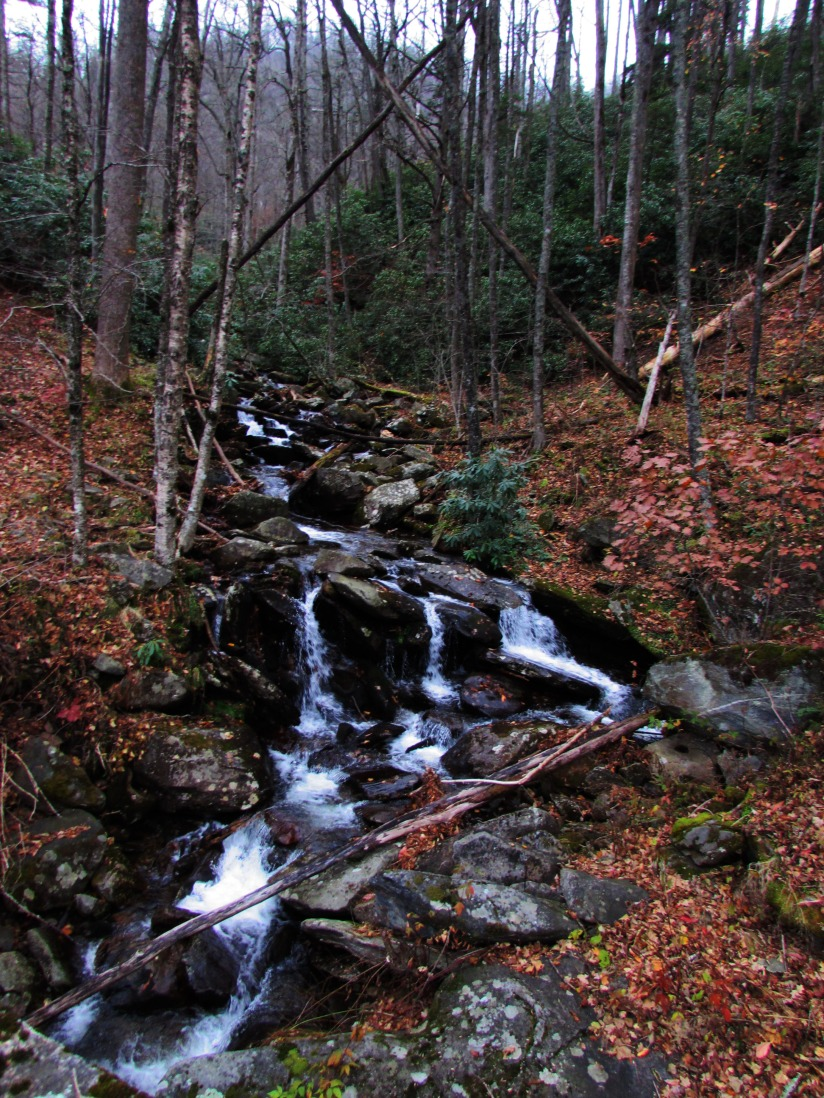 TN Waterfall 2 GSMNP
