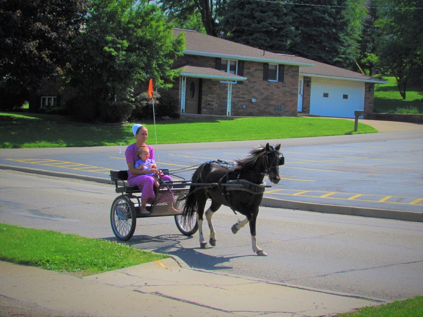 Amish Buggy Sugarcreek Ohio